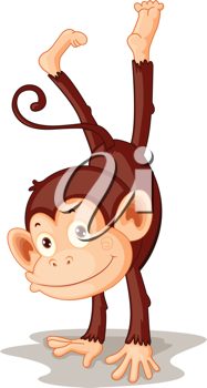 Illustration of a monkey on white