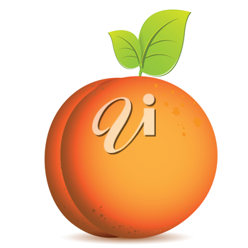 Royalty Free Clipart Image of a Peach