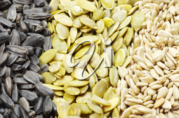 Close up image of sunflower and pumpkin seeds