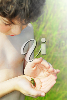 Young boy holding a tiny frog in his hands